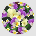 PANSY PATCHWORK  ~ Stickers