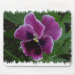 Pansy Pictures Mouse Pad