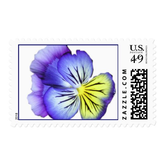 Pansy Postage