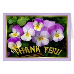 Pansy ~ Thank You ~ Card