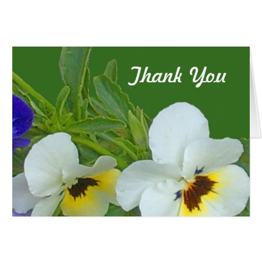 Pansy Thank You Note Card