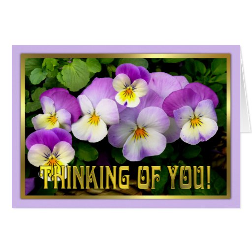 Pansy ~ Thinking of You ~ Card