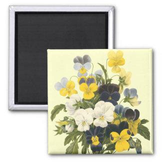 Pansy Violets Botanical Art 2 Inch Square Magnet