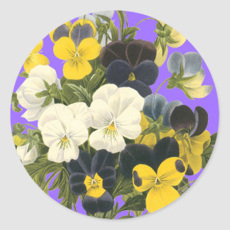 Pansy Violets Botanical Art Stickers