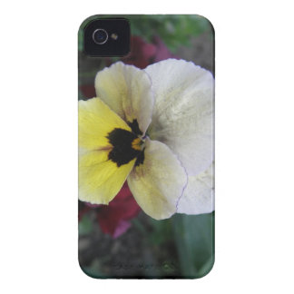 Pansy White and Yellow Blackberry Bold Case