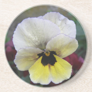 Pansy White and Yellow Coasters
