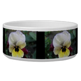 Pansy White and Yellow Dog Bowl