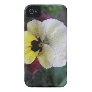 Pansy White and Yellow iPhone 4 Case