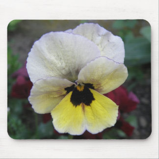 Pansy White and Yellow Mousepad