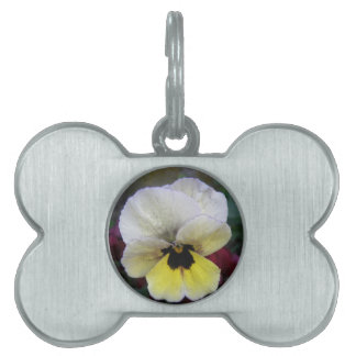Pansy White and Yellow Pet Tag