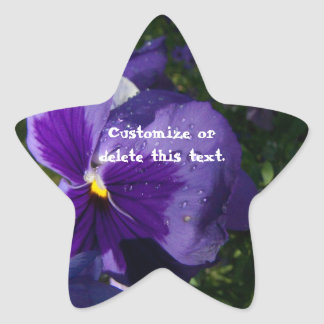 Pansy with Water Droplets; Customizable Stickers