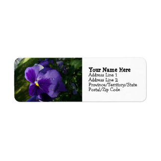 Pansy with Water Droplets Label