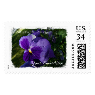 Pansy with Water Droplets Postage