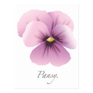 ¡Pansywear! Tarjetas Postales