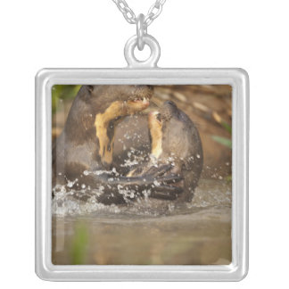 Pantanal NP, Brazil, Giant River Otter, Silver Plated Necklace