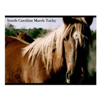 Pantano de Carolina del Sur pegajoso Tarjetas Postales