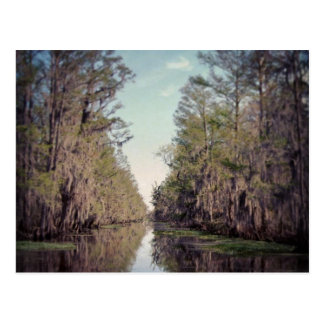 Pantano de Cypress: Luisiana Tarjetas Postales