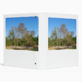 Pantano de la Florida Cypress con los cielos azule