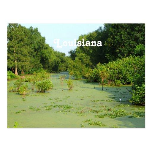 Pantano de Luisiana Postales