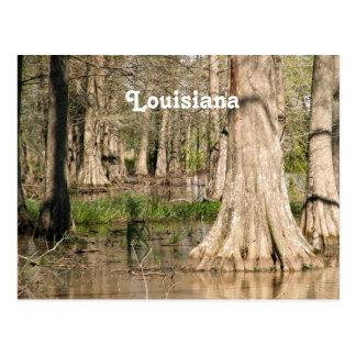 Pantano de Luisiana Tarjetas Postales