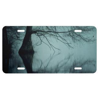 Pantano de niebla azul cambiante del ciprés calvo placa de matrícula