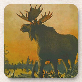 Pantano del burro del pantano de la puesta del sol posavaso