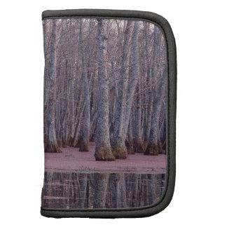 Pantano del invierno de los árboles de la naturale organizadores