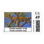 Pantera #150 de la Florida Sellos
