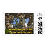 Pantera de la Florida # 151 Franqueo