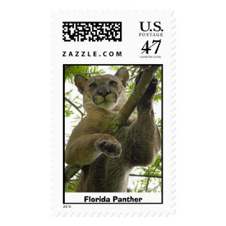 Pantera de la Florida # 152 Sellos Postales