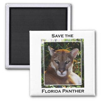 Pantera de la Florida Imán De Nevera