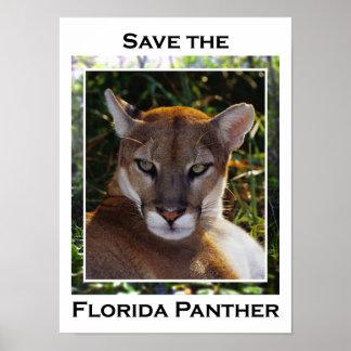 Pantera de la Florida Poster