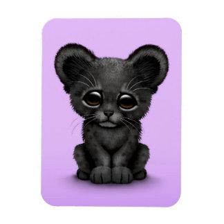 Pantera negra Cub del bebé lindo en púrpura Imán Rectangular
