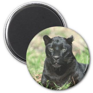Pantera negra imán redondo 5 cm
