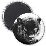 Pantera negra Jaguar Iman De Nevera