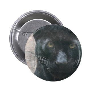 Pantera negra linda pin