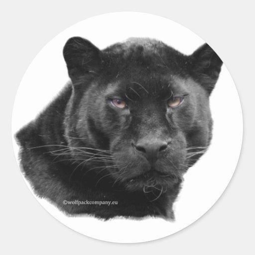 pantera negra pegatina redonda