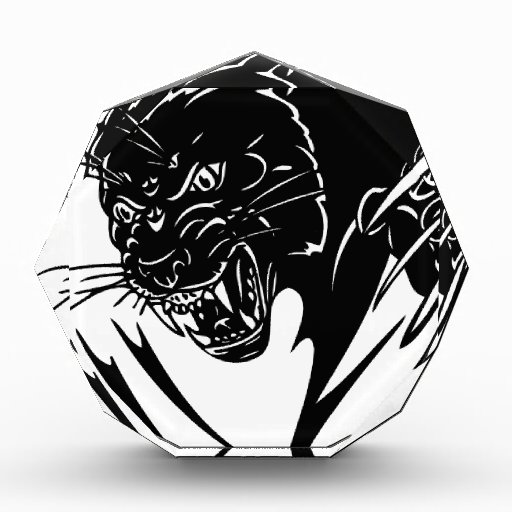 Pantera negra salvaje