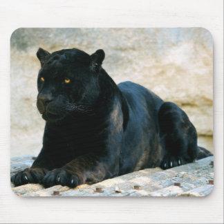Pantera negra tapete de ratones