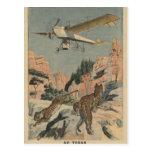 Panteras de la caza de un aeroplano en Tejas Tarjeta Postal