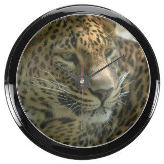 panther-7.jpg relojes pecera