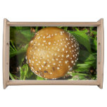 Panther Cap Mushroom Serving Tray