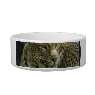 Panther Cat Pet Bowl