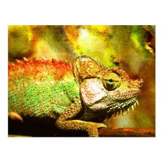 Panther chameleon Digital art Postcard