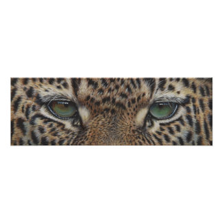 panther leopard eyes poster