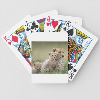 Panther Poker Cards
