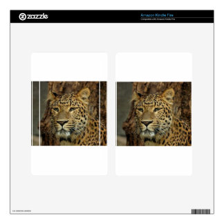 Panther Stalking Kindle Fire Skin