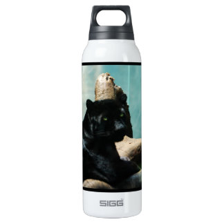 Panther with Piercing Eyes 16 Oz Insulated SIGG Thermos Water Bottle