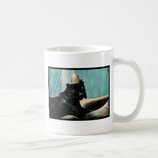 Panther with Piercing Eyes Classic White Coffee Mug