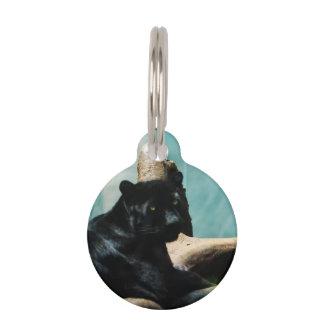 Panther with Piercing Eyes Pet Nametag